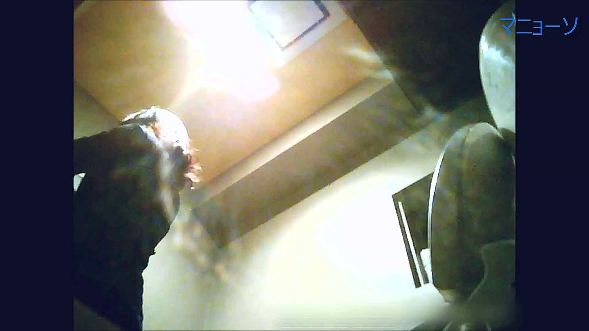 トイレでひと肌脱いでもらいました (OL編)Vol.12 丸見え AV無料 85画像 57