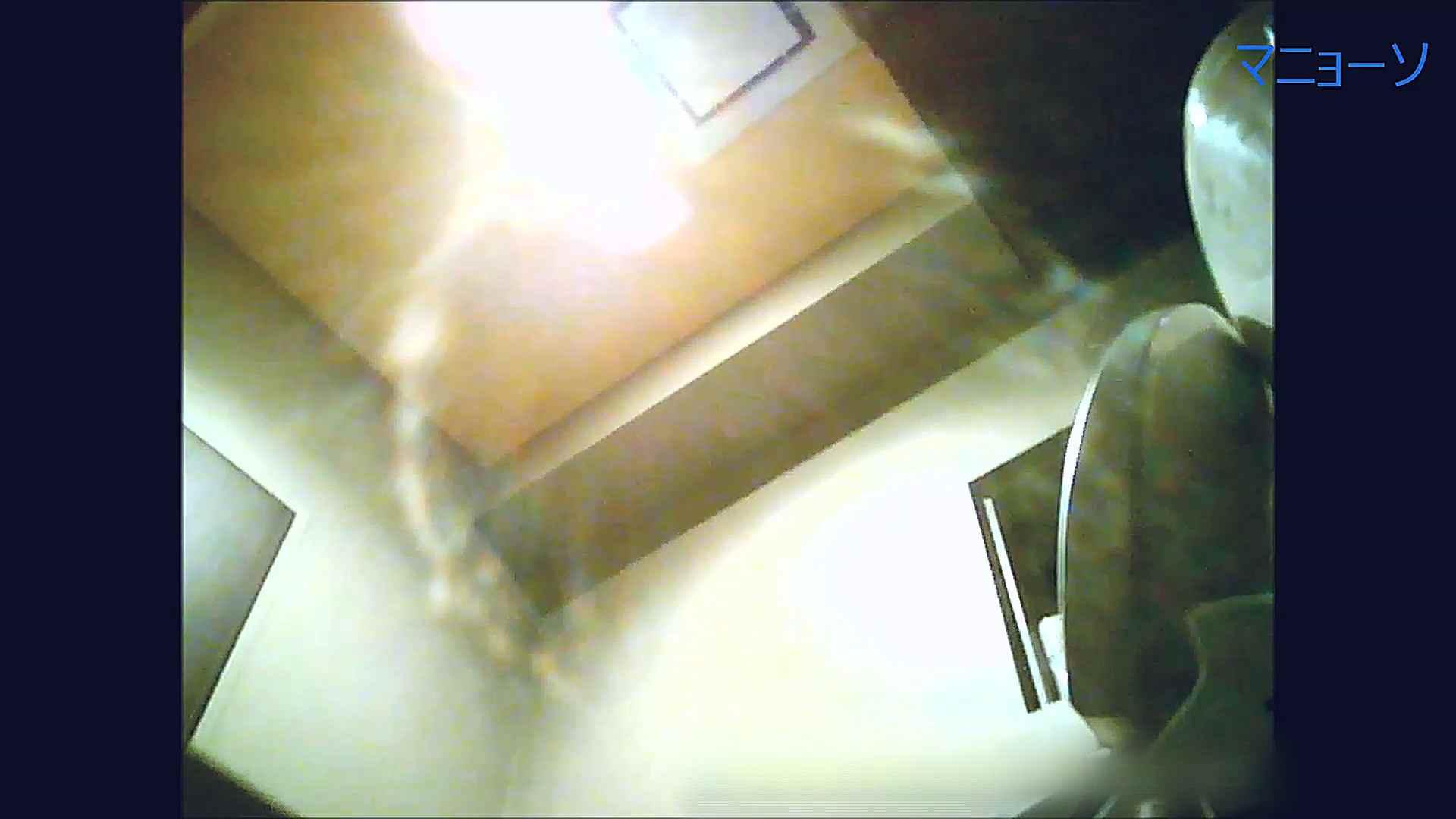 トイレでひと肌脱いでもらいました (OL編)Vol.12 エッチなお姉さん | 高画質動画  85画像 73