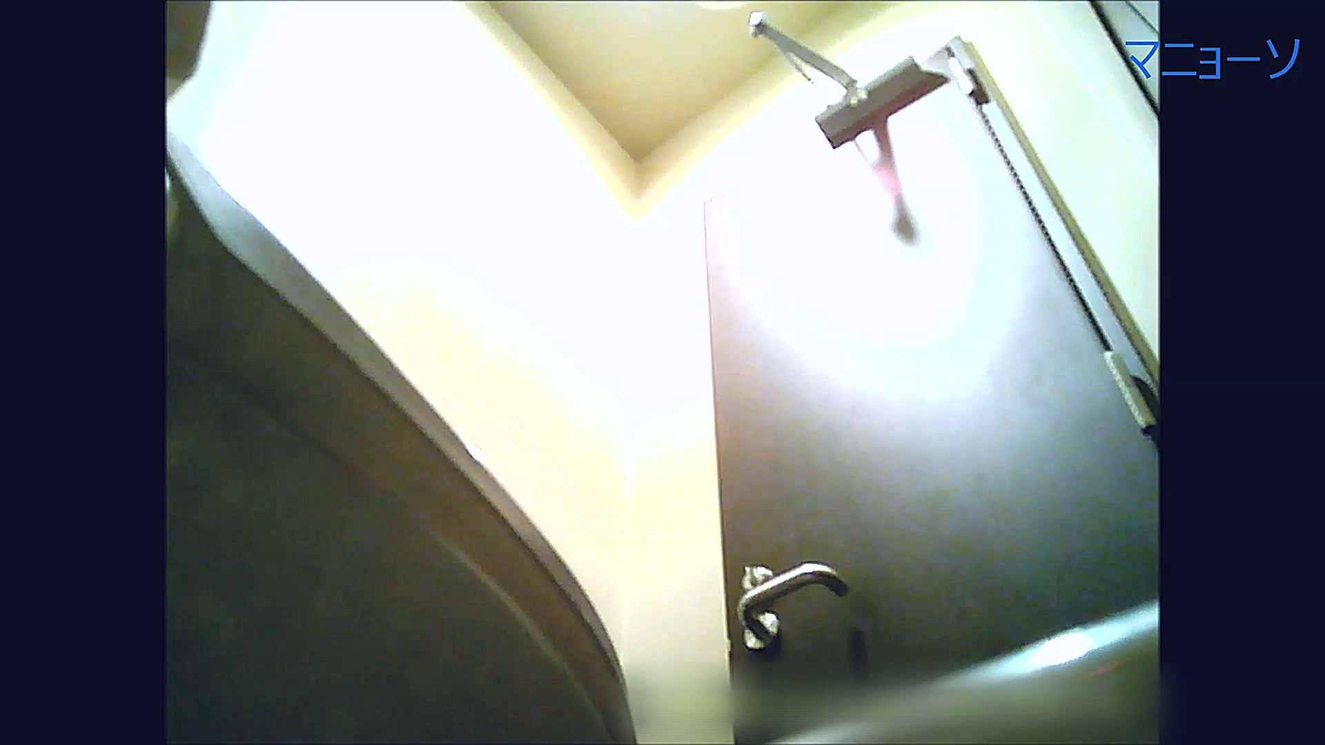 トイレでひと肌脱いでもらいました (番外編)Vol.02 高画質動画 オマンコ無修正動画無料 80画像 20