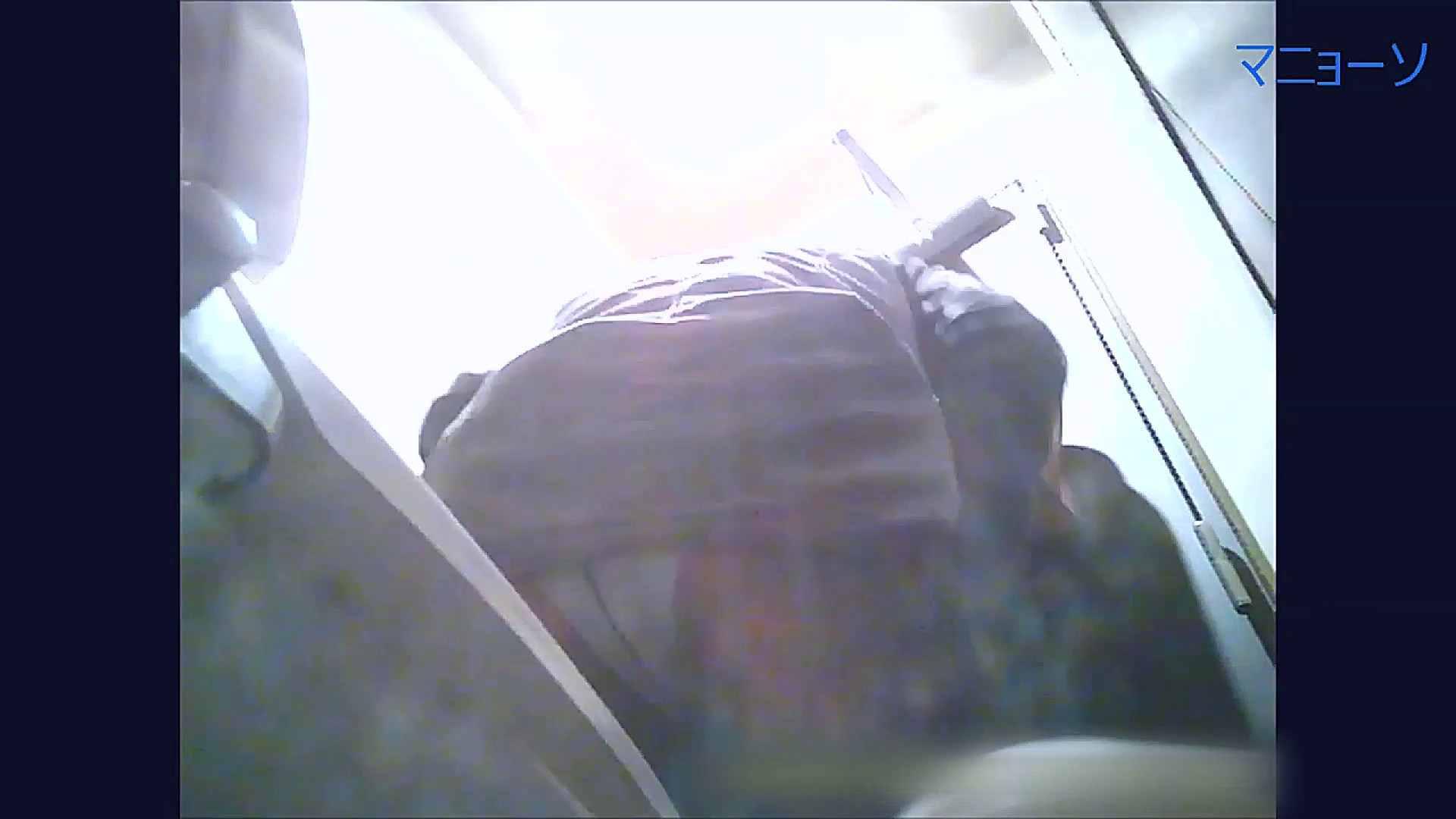 トイレでひと肌脱いでもらいました (番外編)Vol.02 高画質動画 オマンコ無修正動画無料 80画像 28