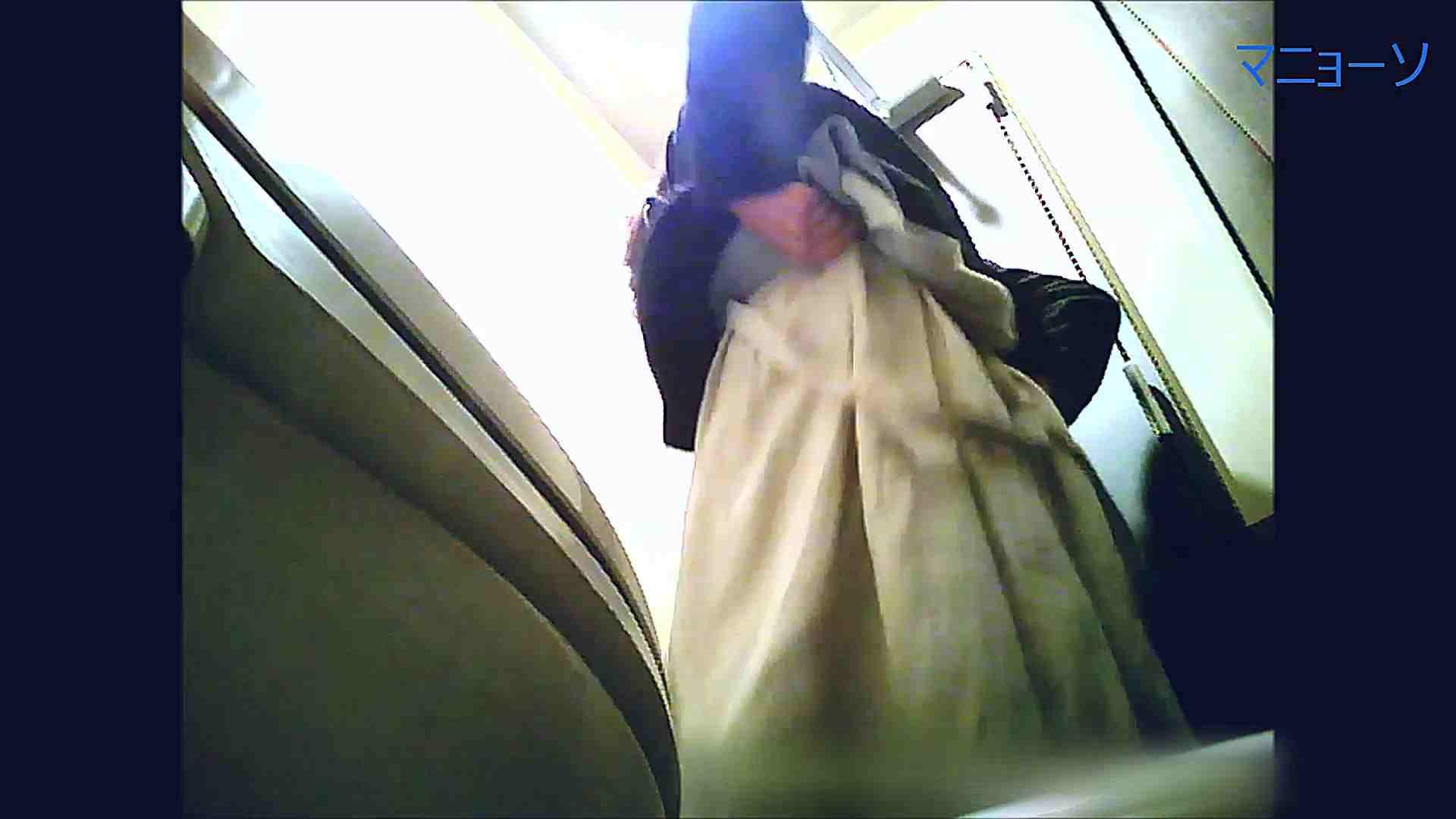 トイレでひと肌脱いでもらいました (番外編)Vol.02 洗面所シーン AV動画キャプチャ 80画像 67