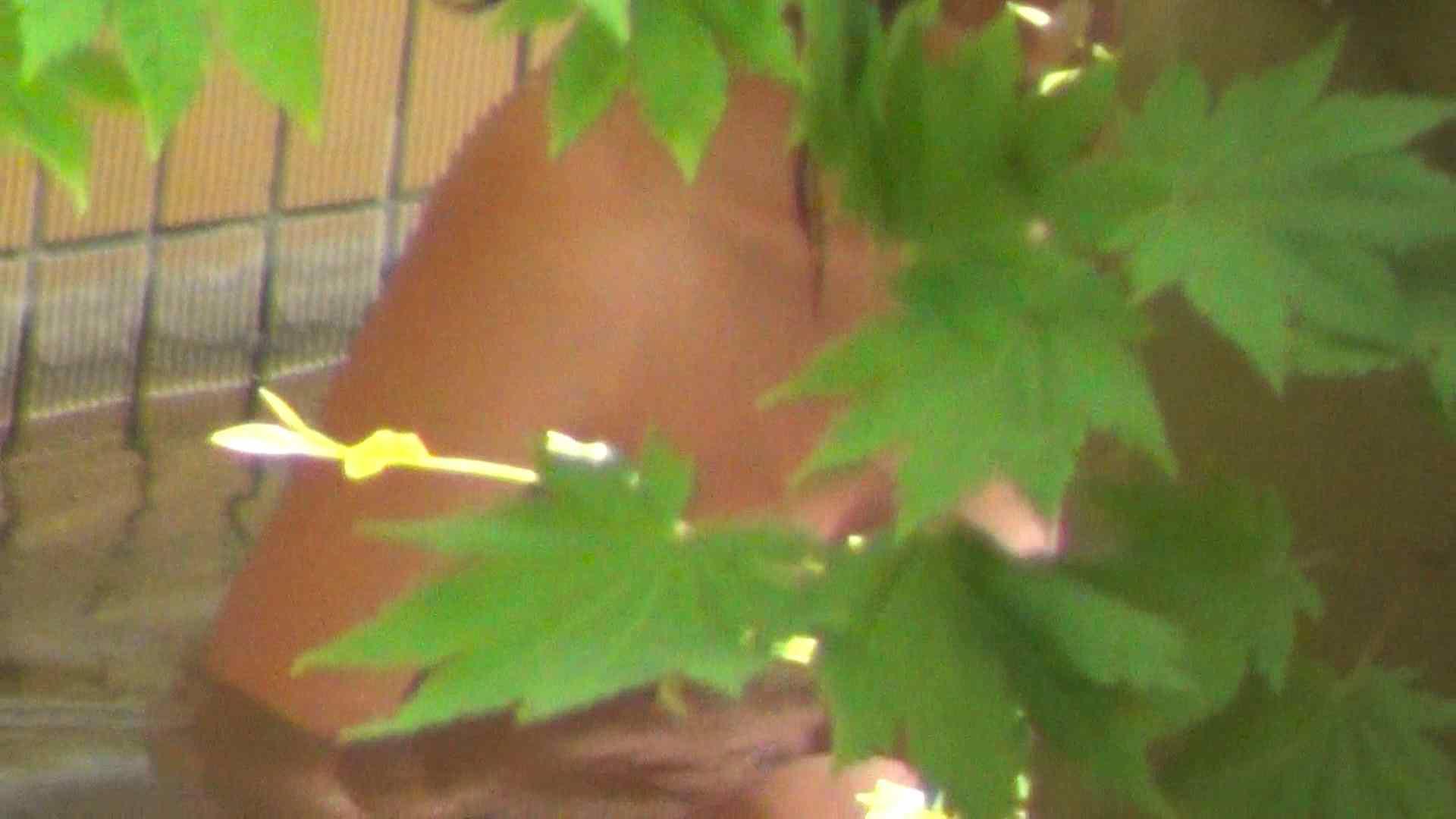 Vol.30 品のある美女 タオルと葉が憎い 美乳 戯れ無修正画像 78画像 28
