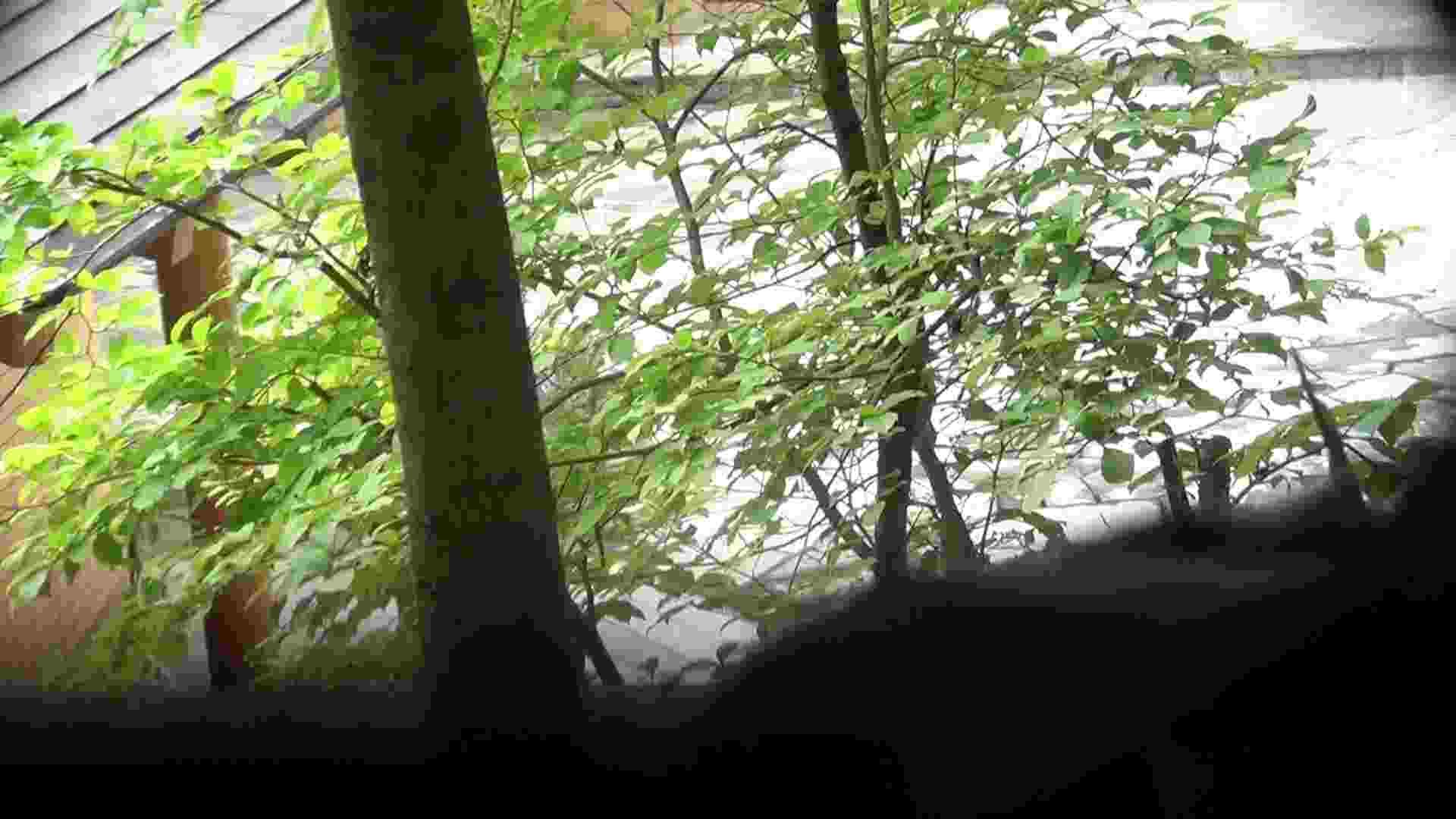 Vol.30 品のある美女 タオルと葉が憎い 高画質動画 オマンコ動画キャプチャ 78画像 51