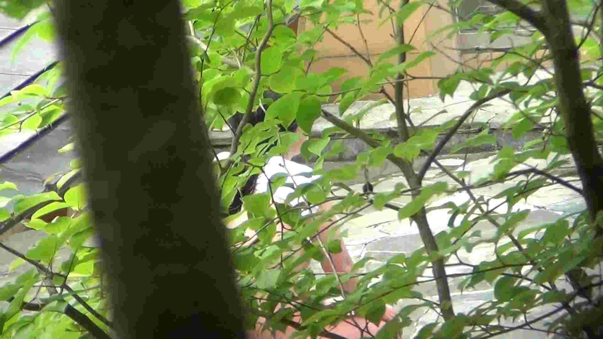 Vol.30 品のある美女 タオルと葉が憎い エッチなお姉さん おめこ無修正動画無料 78画像 56