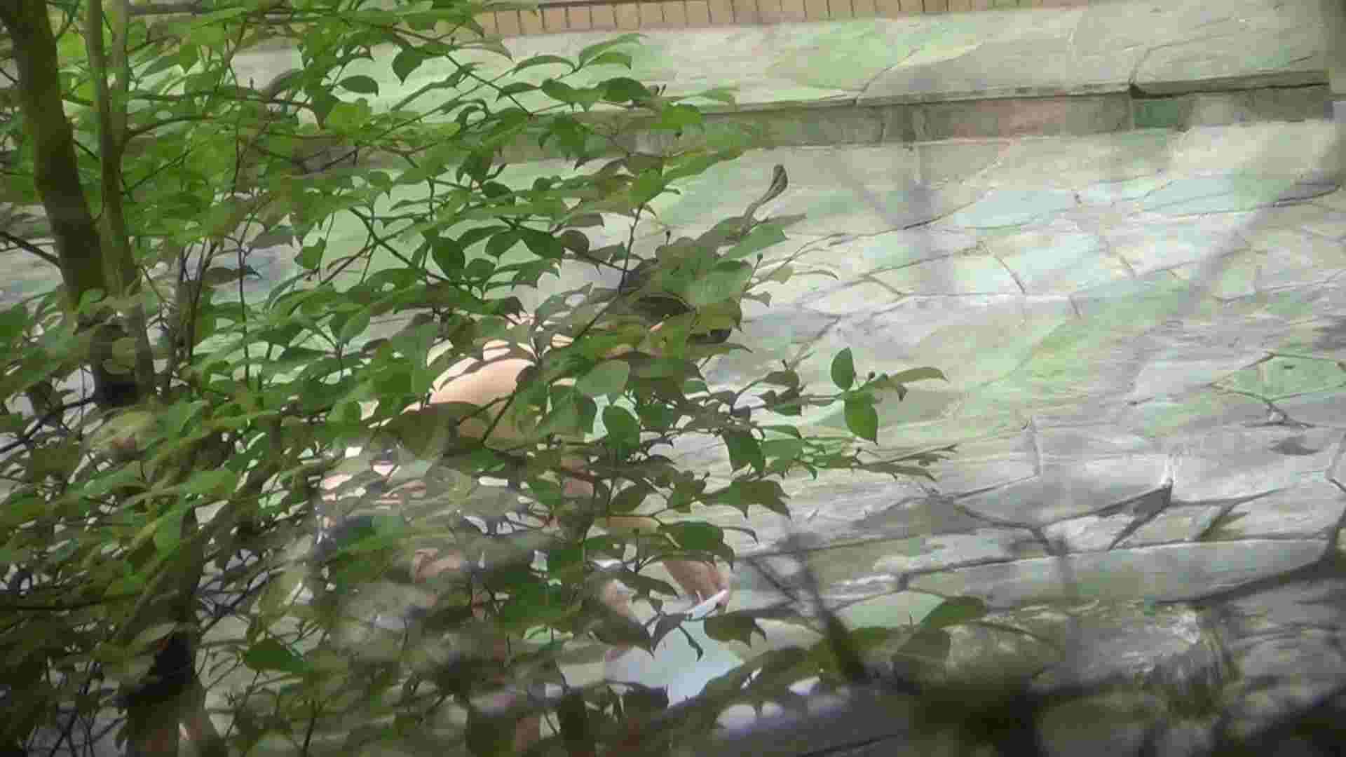 Vol.30 品のある美女 タオルと葉が憎い 細身・スレンダー  78画像 60