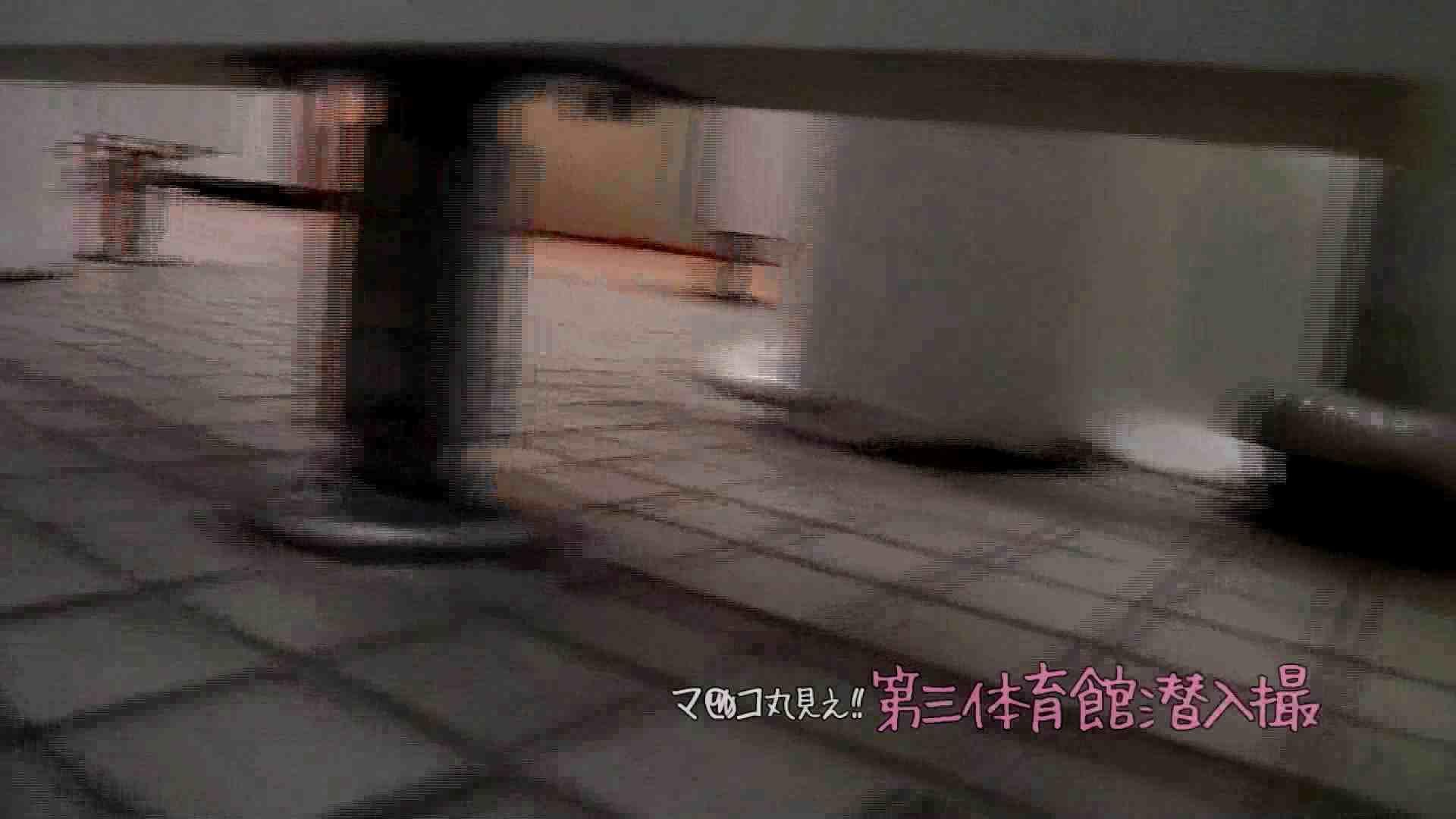 【06位 2016】第三体育館File037 高画質動画 | ギャルズ  80画像 64