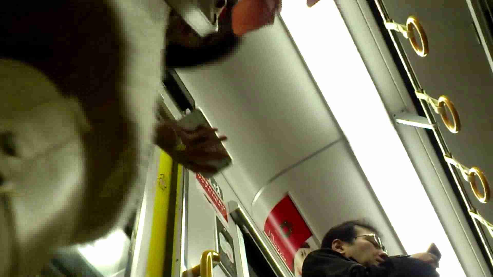盗撮列車 vol.01 エッチなお姉さん セックス画像 90画像 60
