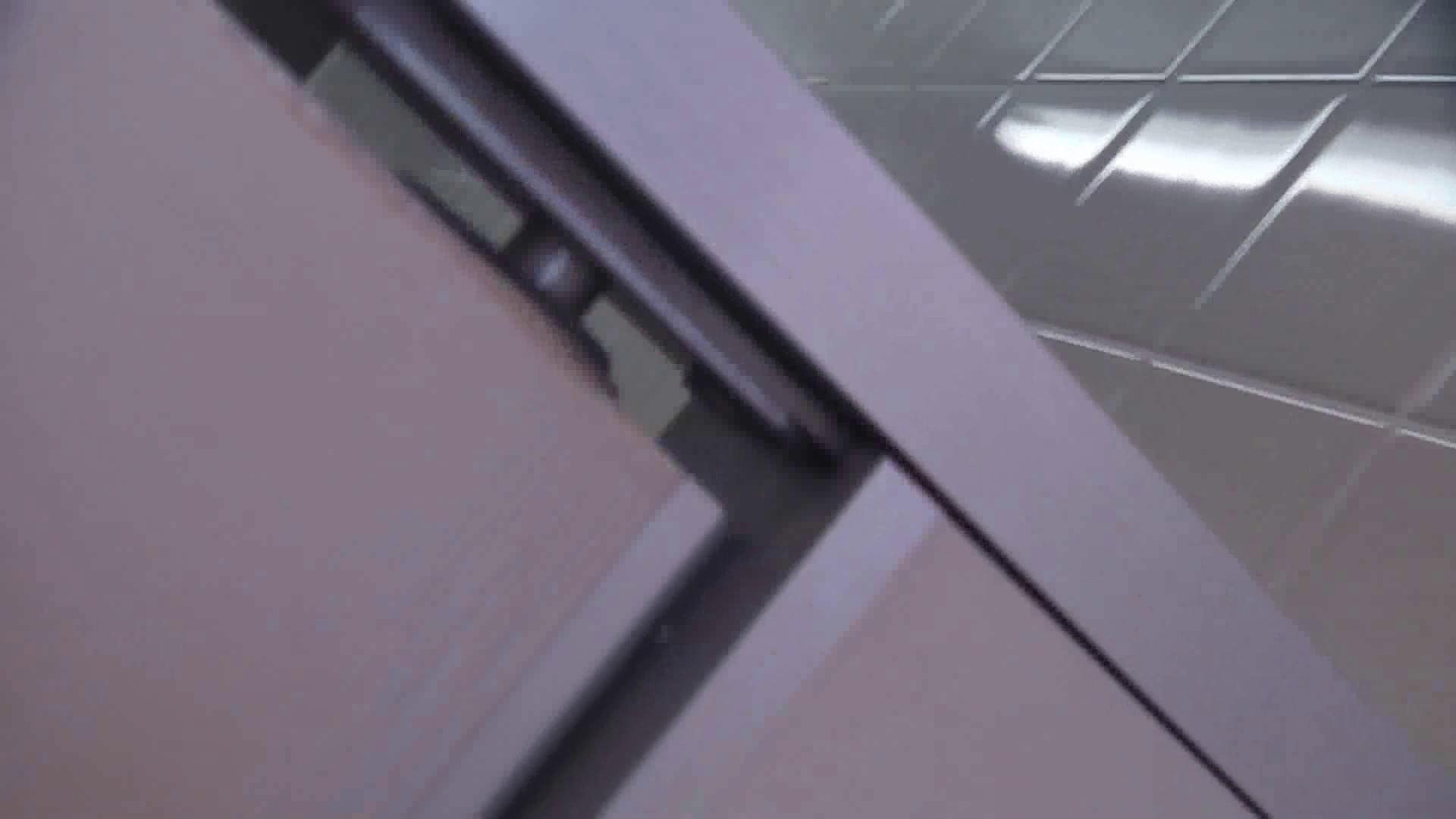 お銀さんの「洗面所突入レポート!!」 vol.28小島陽菜似のピンクオシャレさん 丸見え 性交動画流出 97画像 67