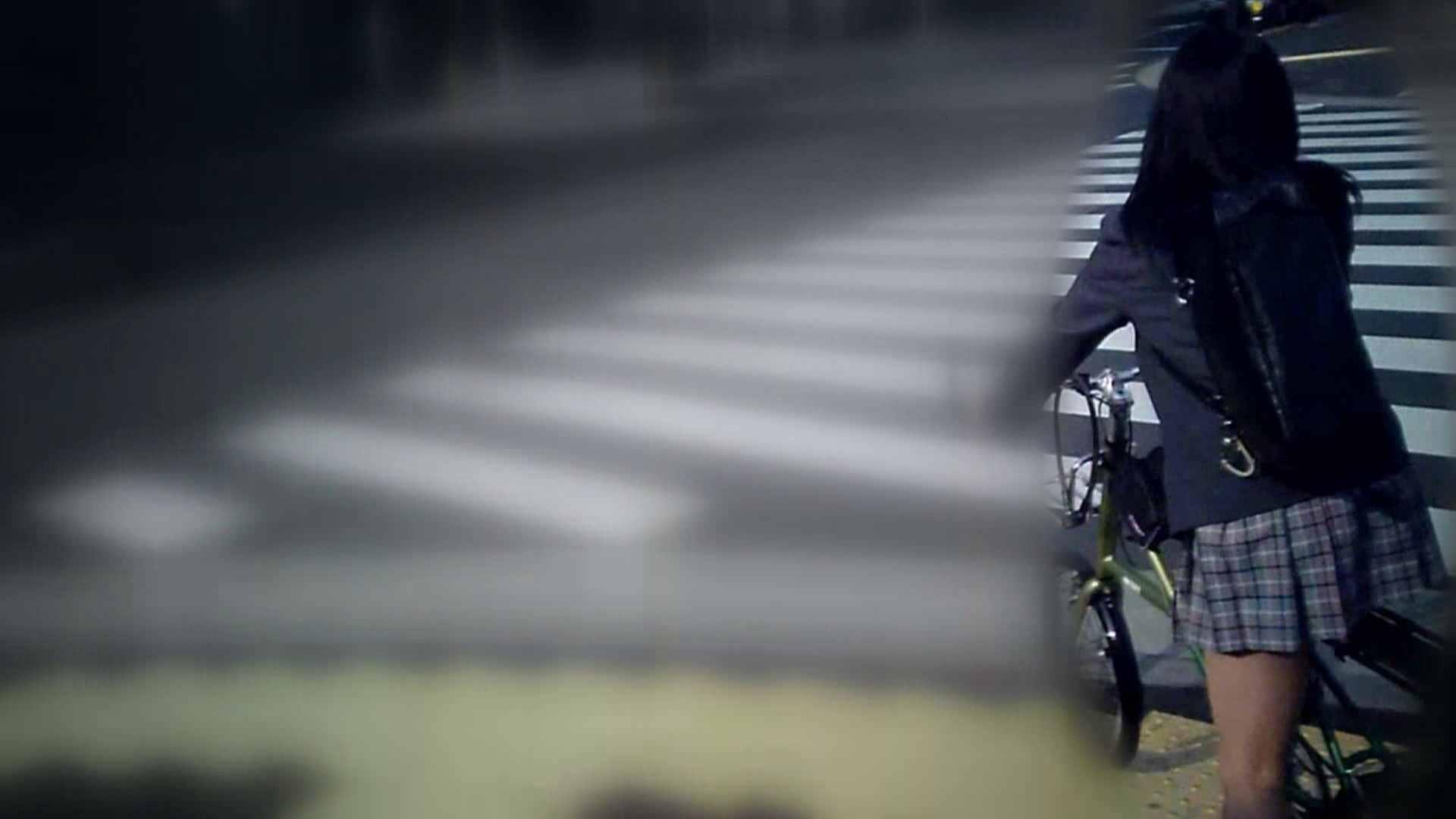 自転車パンチラ Vol.01 ギャルズ ぱこり動画紹介 90画像 26