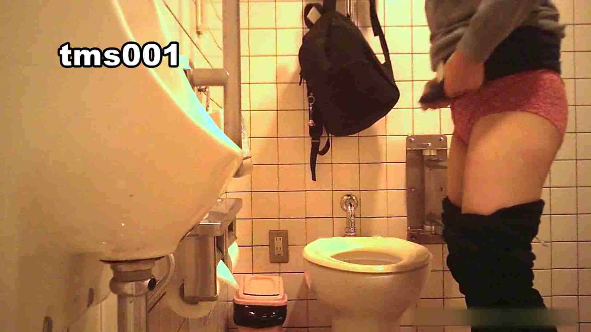 トイメンの割れ目 vol.001 洗面所シーン AV動画キャプチャ 91画像 14
