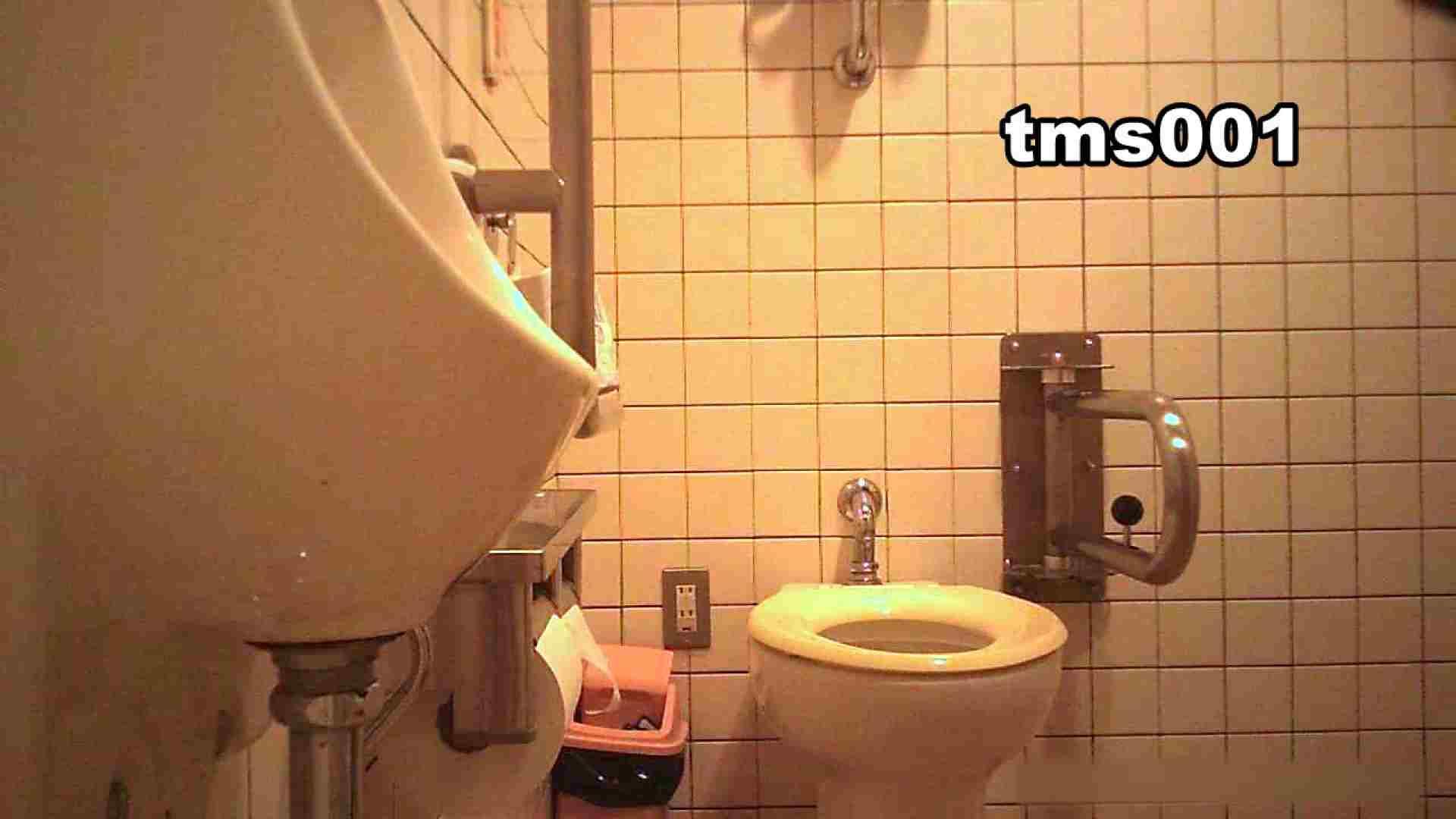 トイメンの割れ目 vol.001 洗面所シーン AV動画キャプチャ 91画像 24