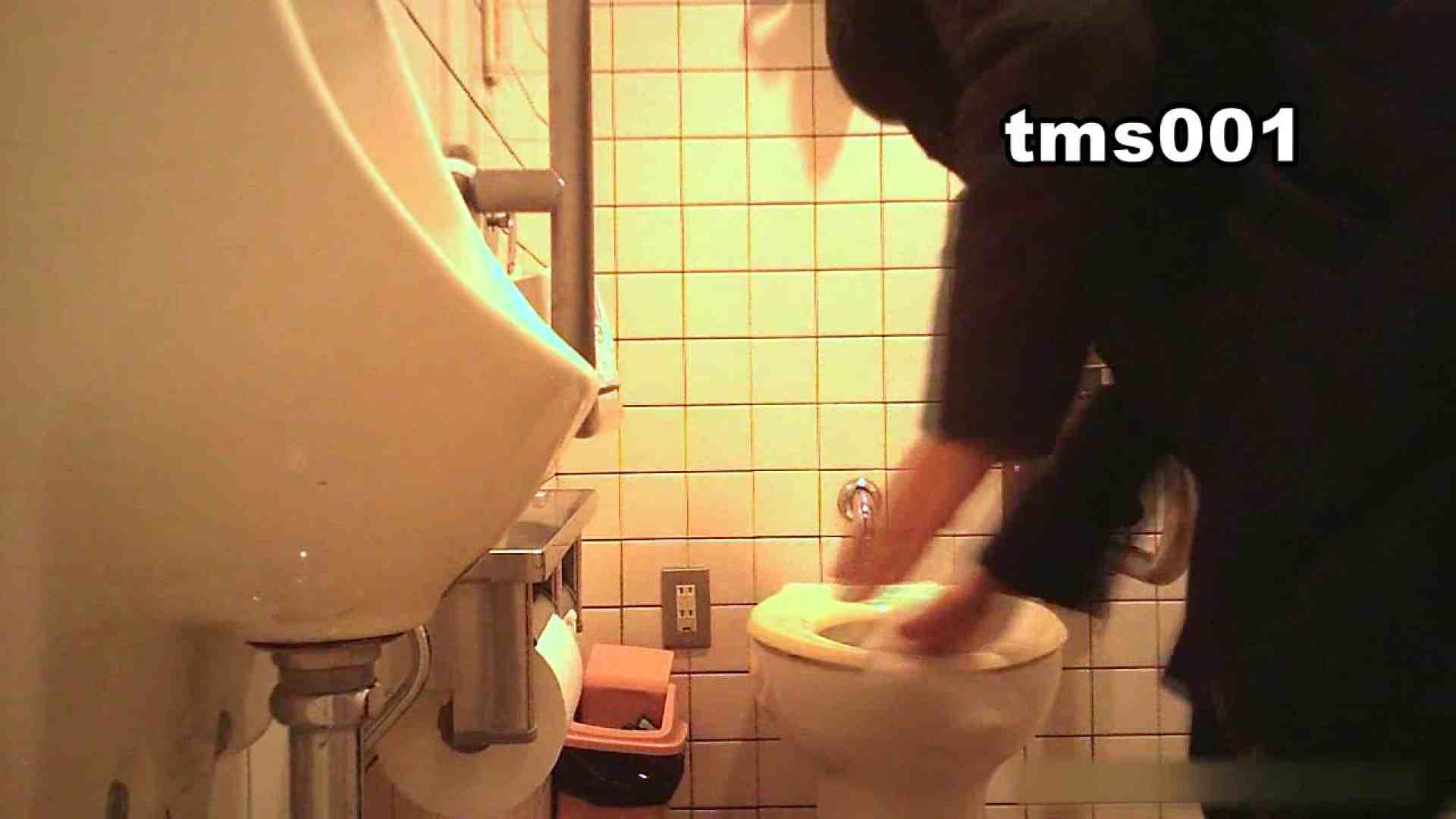 トイメンの割れ目 vol.001 洗面所シーン AV動画キャプチャ 91画像 44