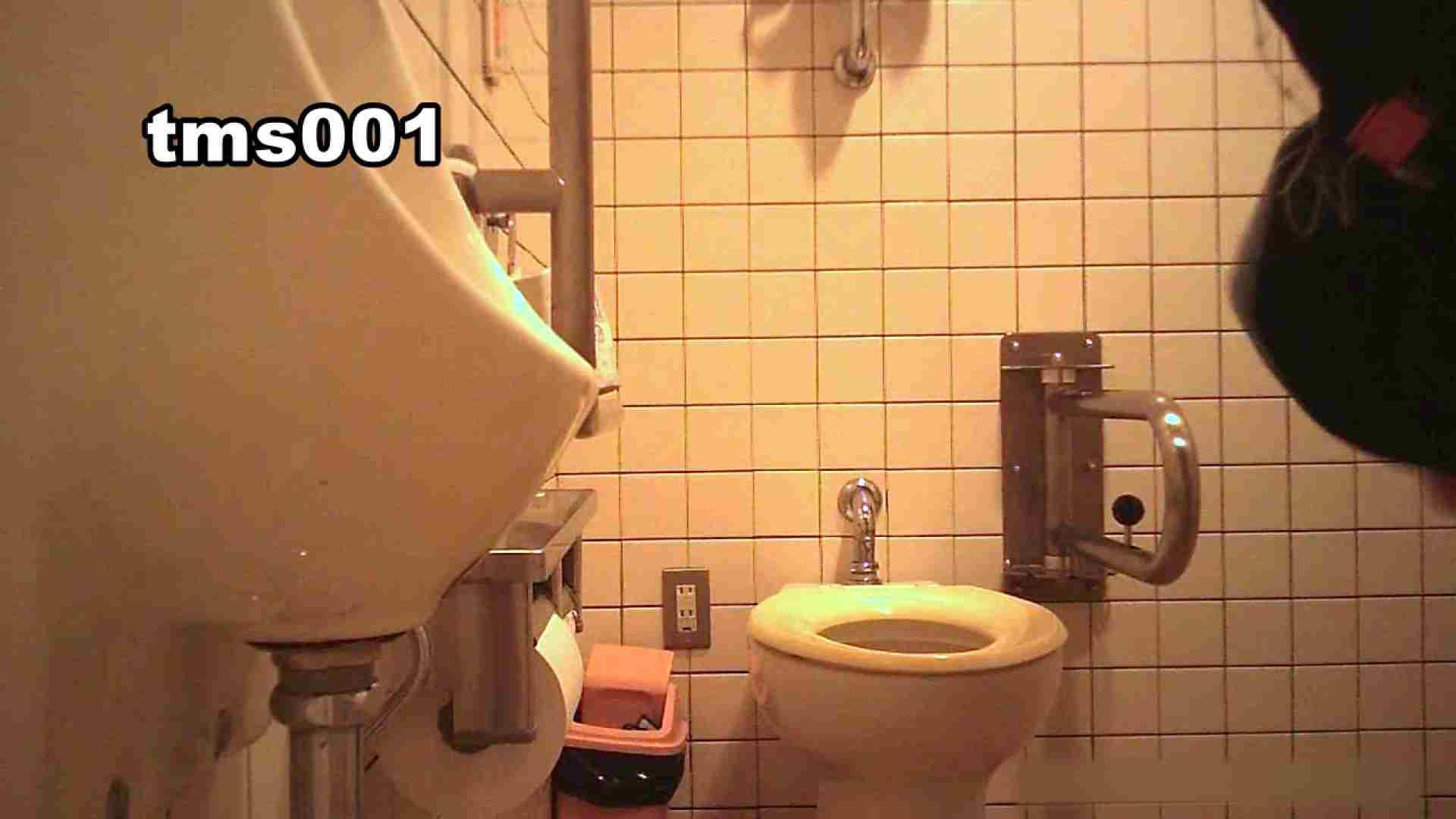 トイメンの割れ目 vol.001 洗面所シーン AV動画キャプチャ 91画像 49
