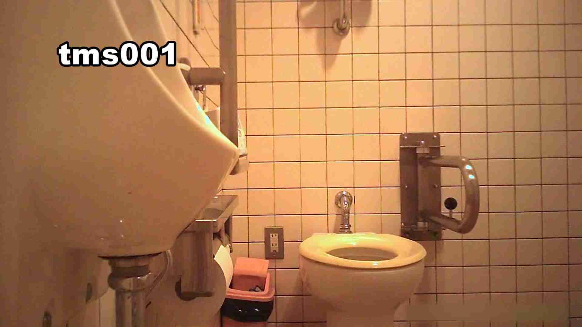 トイメンの割れ目 vol.001 洗面所シーン AV動画キャプチャ 91画像 54