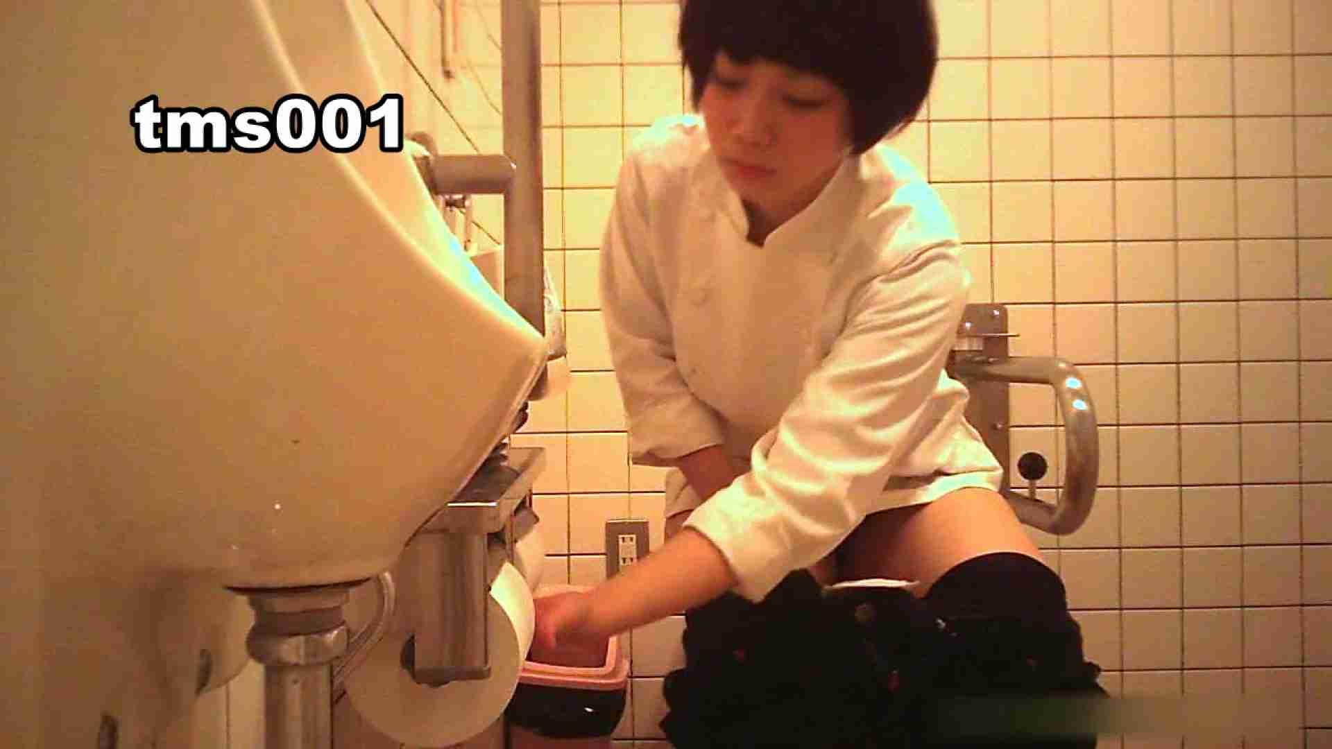 トイメンの割れ目 vol.001 エッチなお姉さん オメコ無修正動画無料 91画像 68