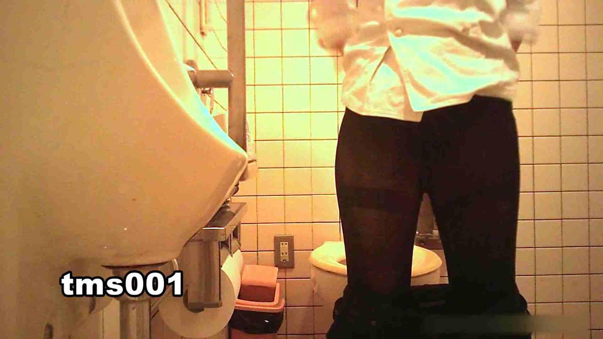 トイメンの割れ目 vol.001 丸見え AV無料動画キャプチャ 91画像 72