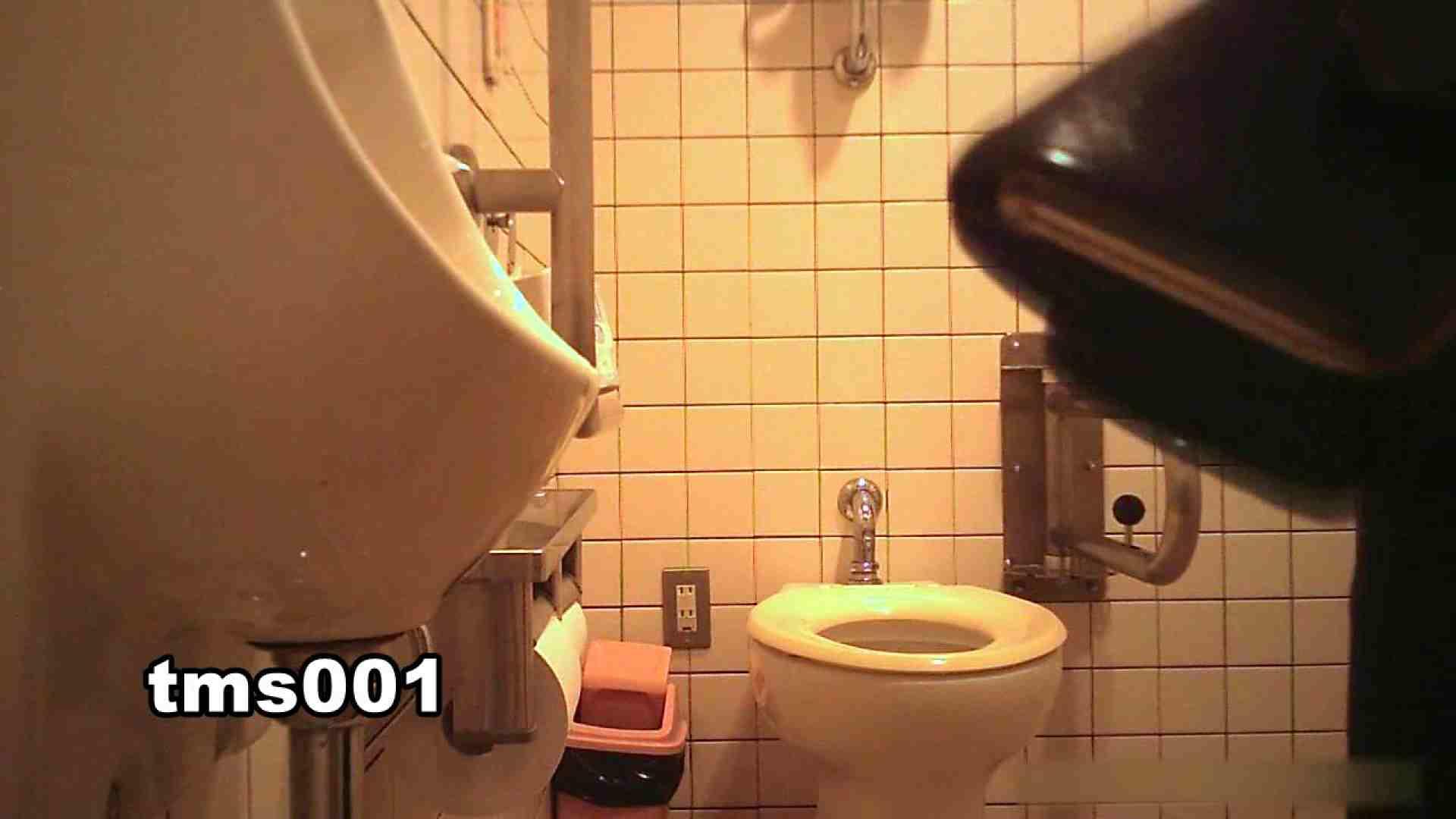 トイメンの割れ目 vol.001 洗面所シーン AV動画キャプチャ 91画像 79