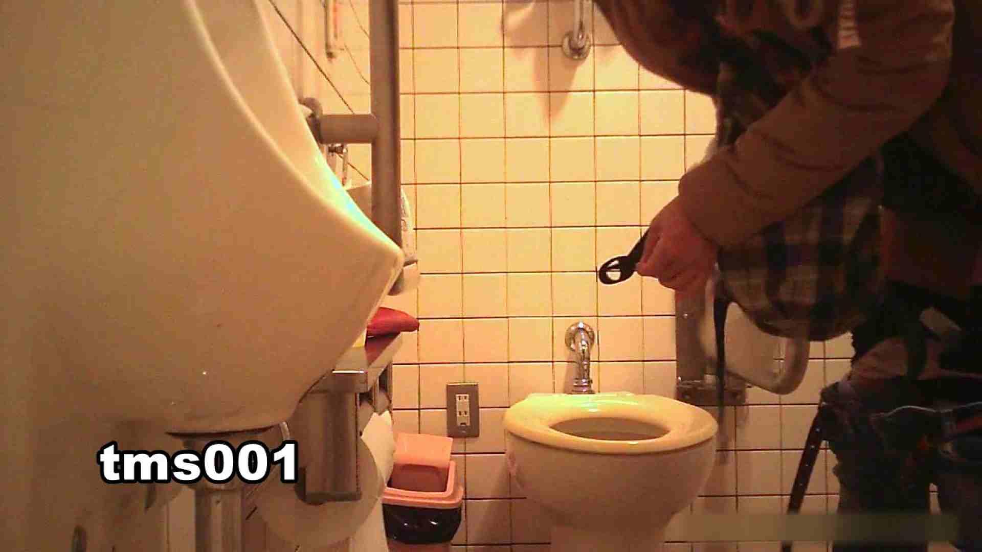 トイメンの割れ目 vol.001 洗面所シーン AV動画キャプチャ 91画像 84