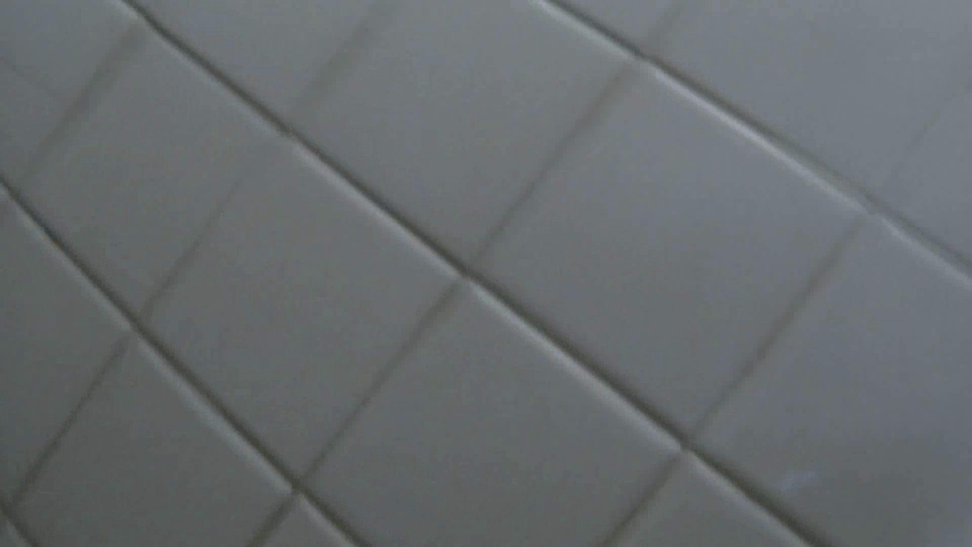 洗面所特攻隊vol.011 洗面所シーン | 高画質動画  50画像 37