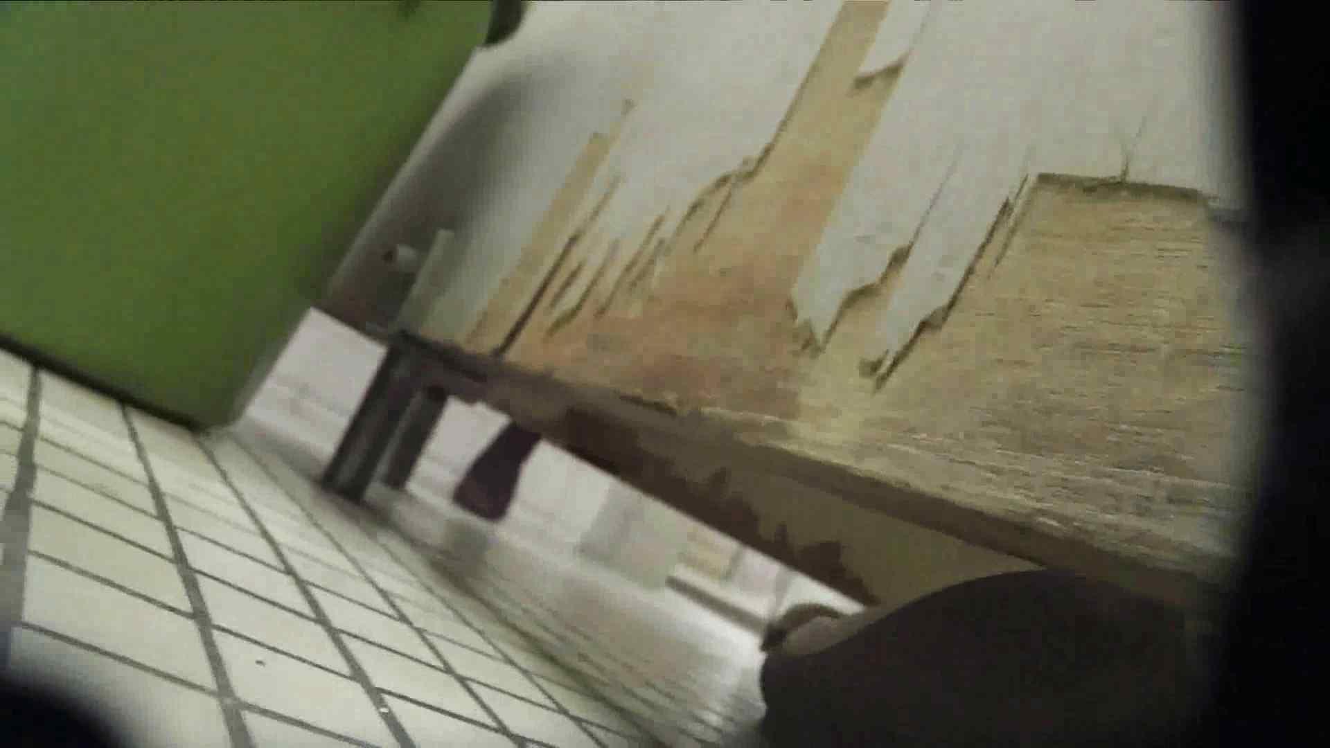 【美しき個室な世界】 vol.017 (゜∀゜) 高画質動画   洗面所シーン  38画像 28