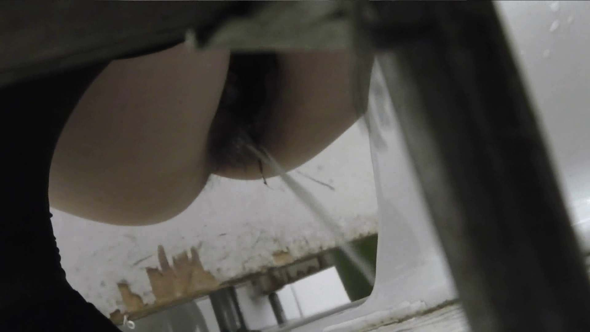【美しき個室な世界】 vol.017 (゜∀゜) 高画質動画  38画像 36