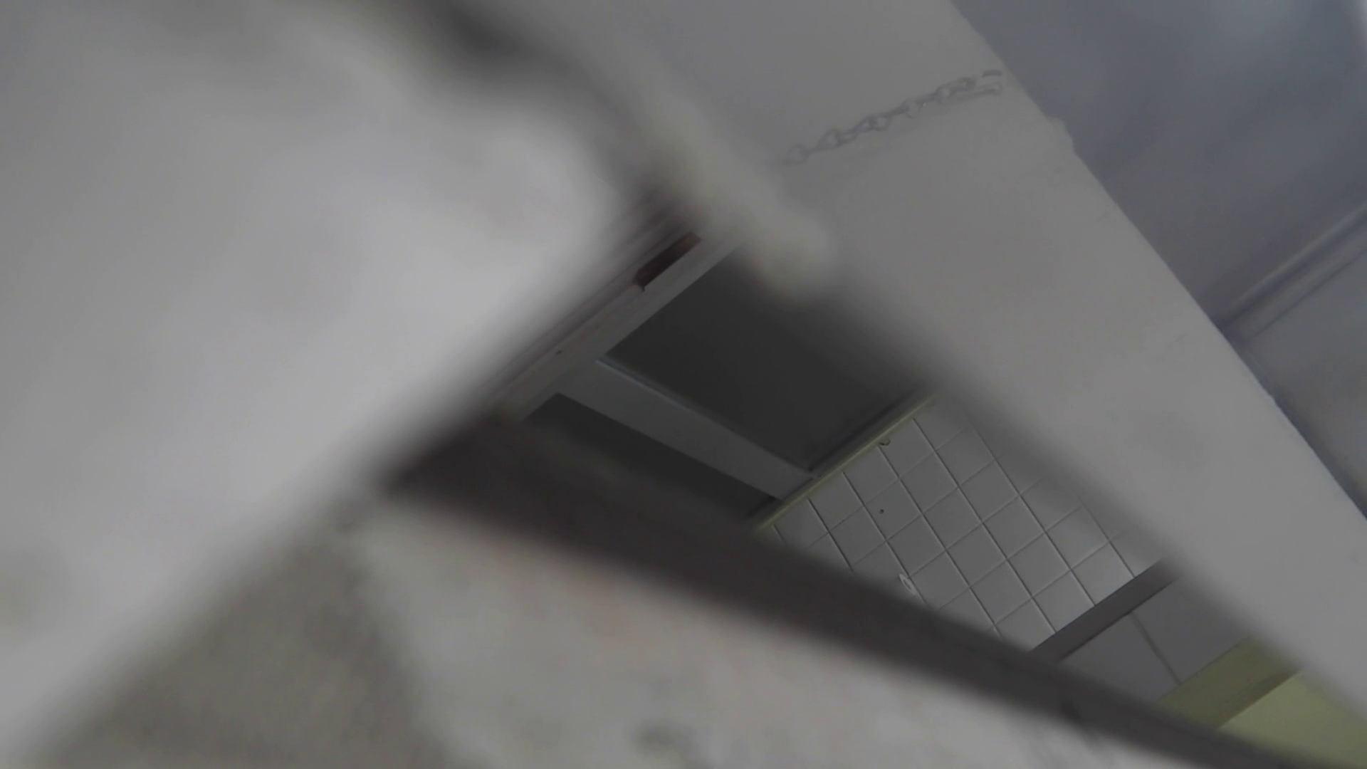 洗面所特攻隊 vol.020 びにょ~ん エッチなお姉さん  54画像 10