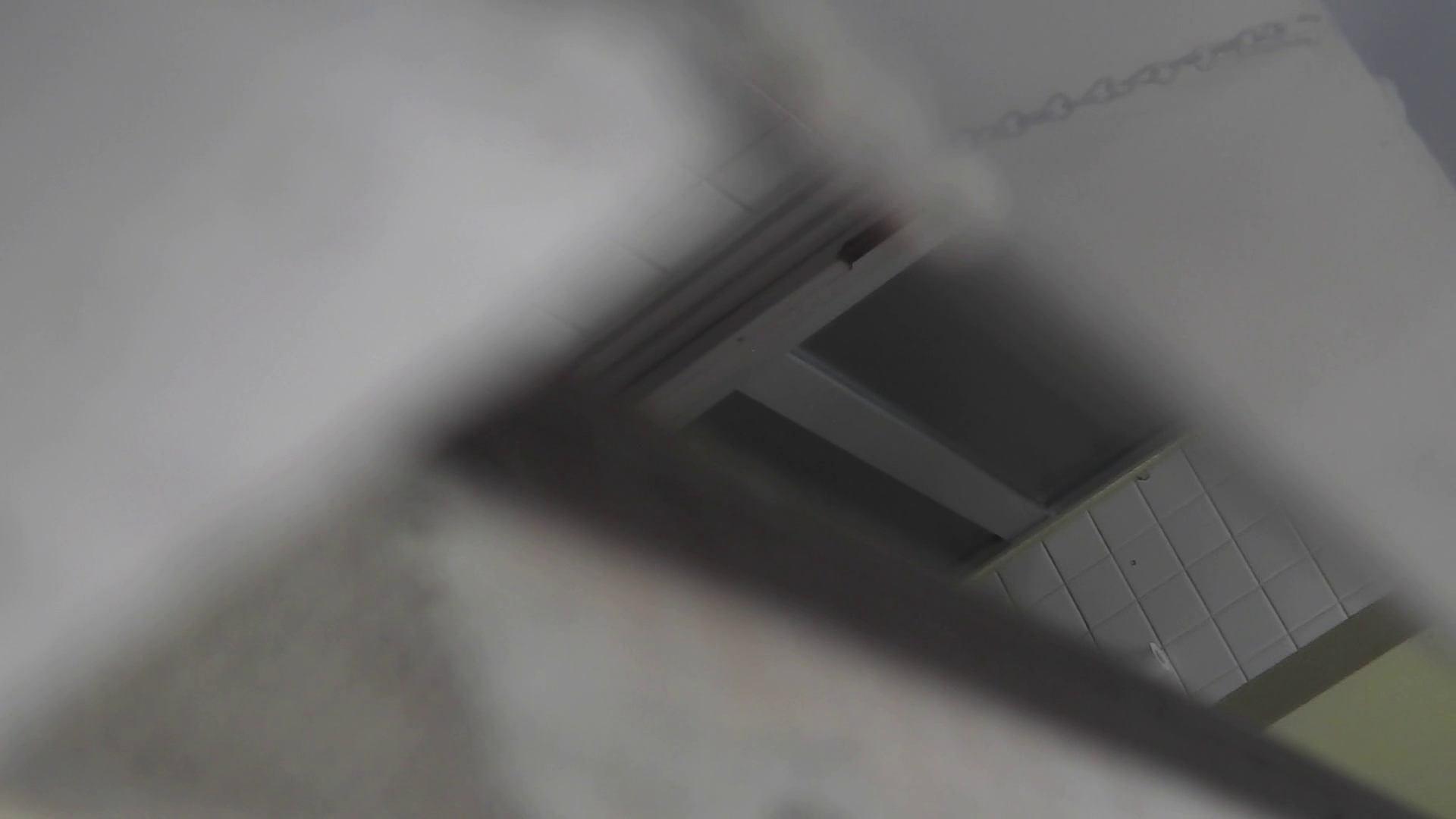 洗面所特攻隊 vol.020 びにょ~ん 盛合せ われめAV動画紹介 54画像 43