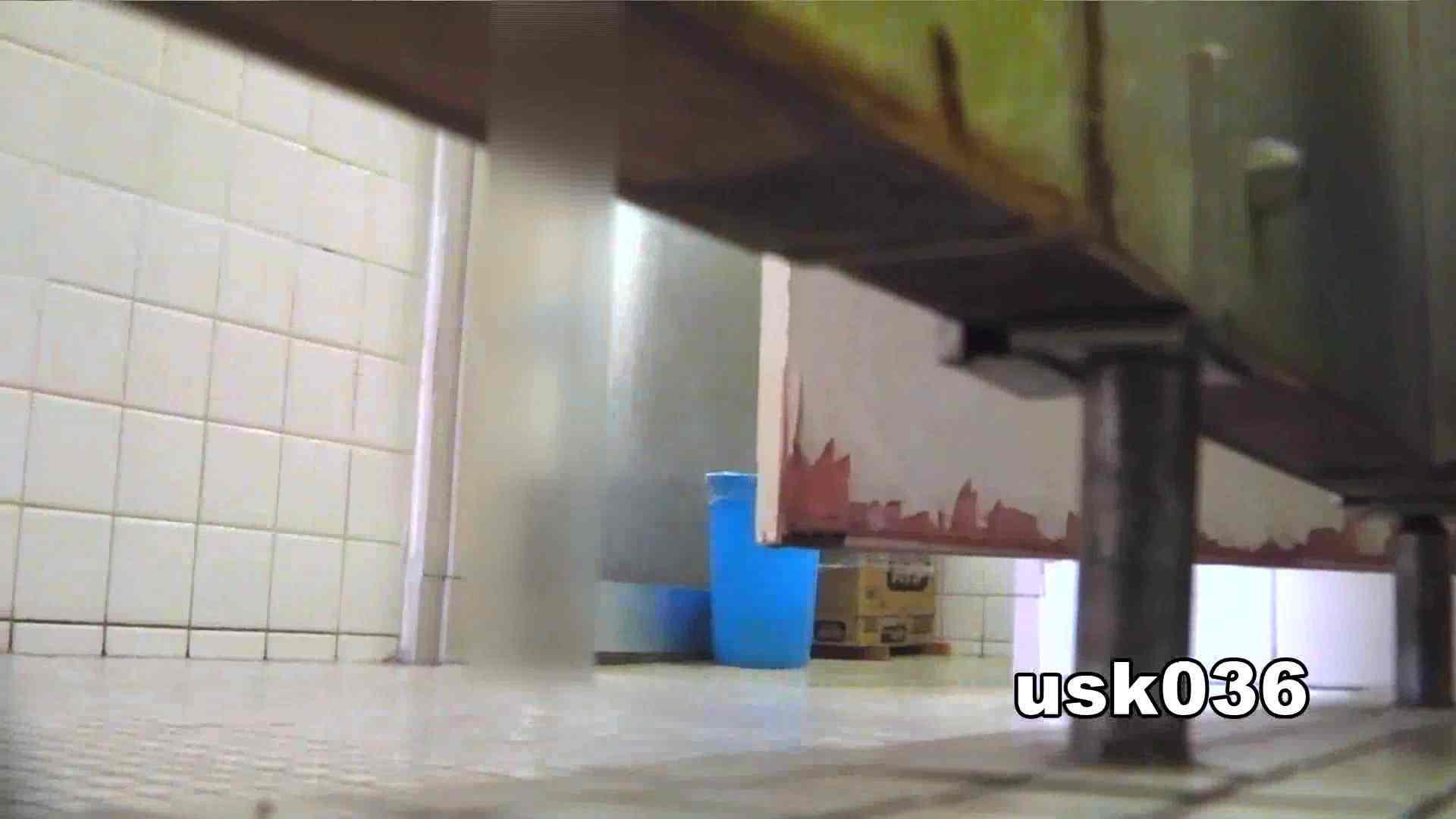 【美しき個室な世界】 vol.036 軟アリ 洗面所シーン SEX無修正画像 16画像 5