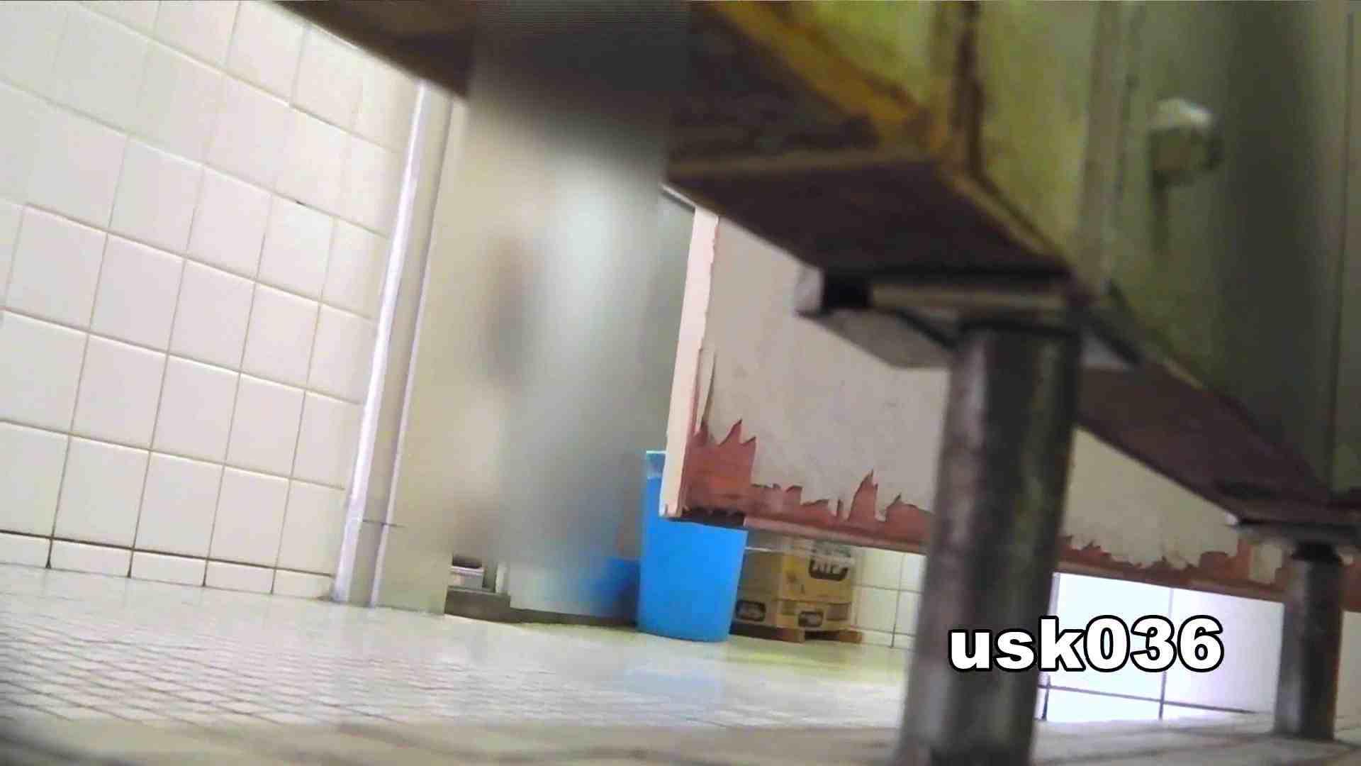【美しき個室な世界】 vol.036 軟アリ 洗面所シーン SEX無修正画像 16画像 8