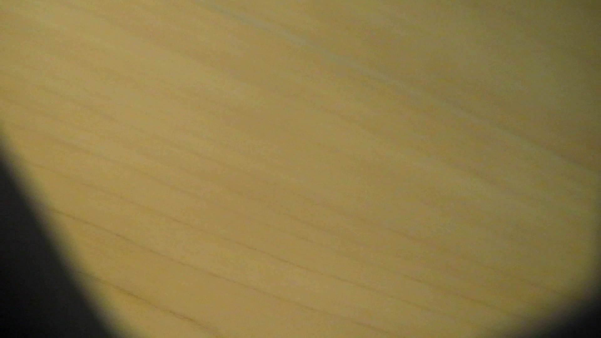 阿国ちゃんの「和式洋式七変化」No.13 丸見え ぱこり動画紹介 46画像 15