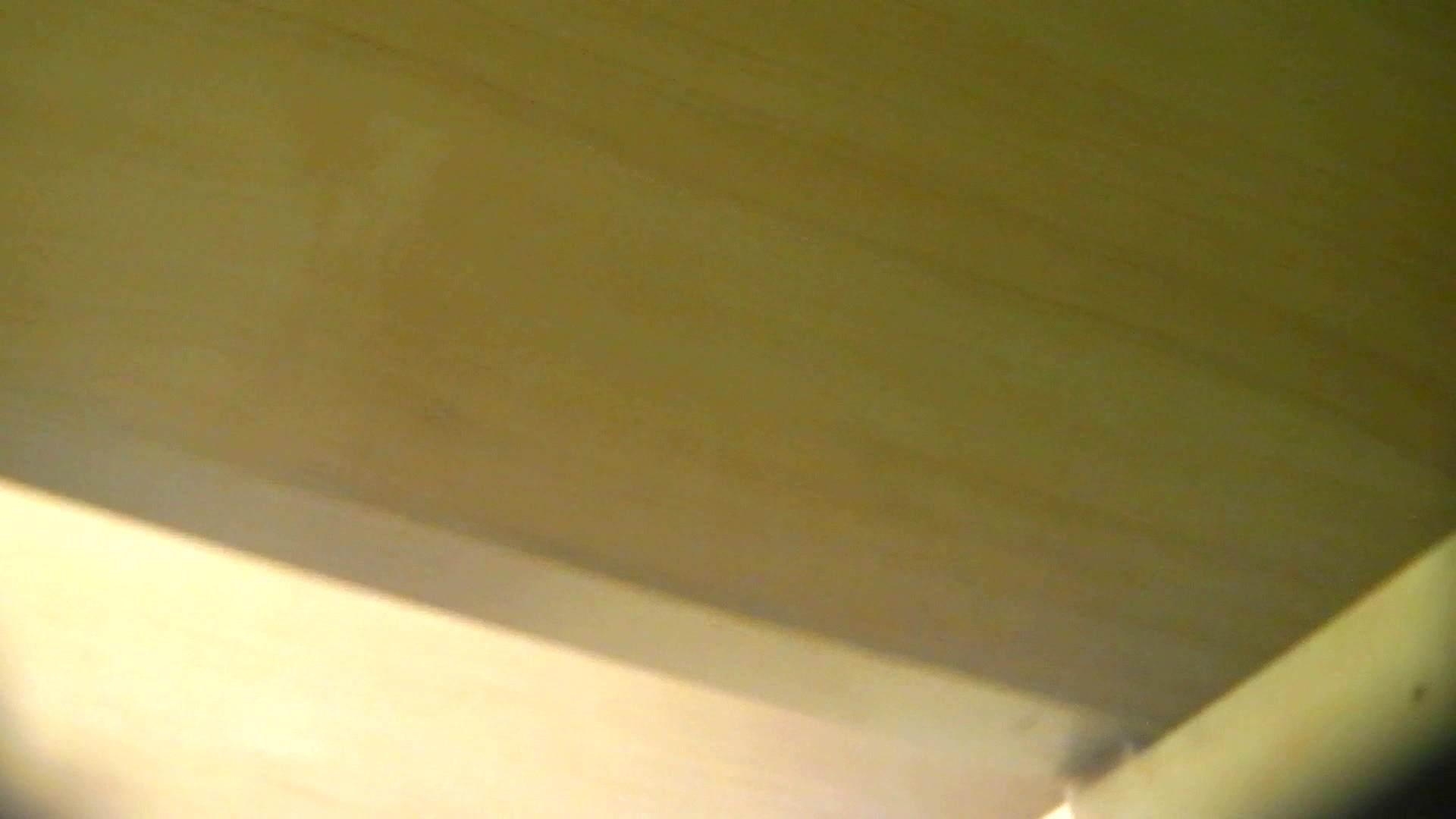 阿国ちゃんの「和式洋式七変化」No.13 丸見え ぱこり動画紹介 46画像 39